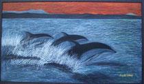 Delfine im griechischen Mittelmeer