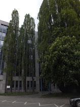 Landgericht München II