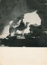 Sahara par Georges Tairraz