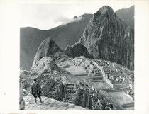 Machu Picchu, cité inca, Pérou