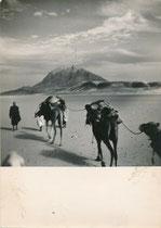 Sahara - Georges Tairraz
