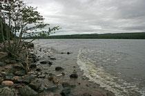 Loch Ness (39 km lang, 1,5 km breit (55 km²), 226 Metern tief) ist flächenmäßig der zweitgrößte See in Schottland.