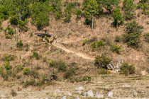 Kurz bevor der Weg in die schattigen Wald mündet, kamen wir an dieser Gebetsmühle vorbei.