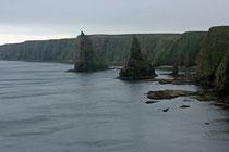 An den Staks of Dunkensby bekamen wir die Wildheit des Pentland Firth hautnah zu spüren. Der Wind war stürmisch und der Regen eisig kalt.