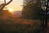 Sonnenuntergang nahe dem Cairnpupple Hill bei Bathgate (West Lothian).