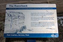 The Razorback