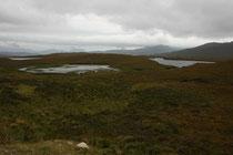 Von Ullapool aus fuhren wir auf der 835 weiter hinauf in den Norden Schottlands. Unser Weg war von zahlreichen kleinen Lochs gesäumt.