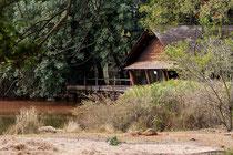 Das Restaurant mit Blick auf den Hippo- und Kroko-Teich.