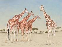 "Ricarda Blank: ""Ein toller Kerl""<br>Digital Painting, Pigmentdruck auf Büttenpapier<br>30 × 40 cm<br>165,-€<br>e-mail: kontakt@ricarda-blank.de"