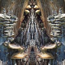 "Dagmar Laimgruber: ""Feentreppe""<br>Fotografie gespiegelt, Leinwand mit Keilrahmen<br>60 × 60 cm<br>95,-€<br>Tel. 0170 5573780, e-mail: dagmar-ls@web.de"