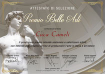 Attestato selezione al Premio Belle Arti, Roma 2021, conferito al fotografo Luca Cameli