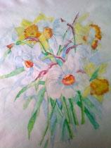 Jonquilles et Narcisses