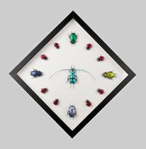 Beetles Clock 2015