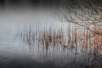 Relections - Senne