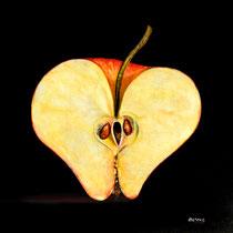 Pomme d'amour Aquarelle, Pastel & Fusain: Arches, 42 x 4