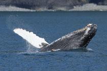 Seward, Alaska (USA)