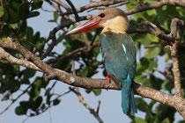 Kalametiya (Sri Lanka)