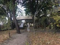Morgenstimmung auf Kazila Islands