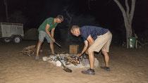 Albert und Moritz kümmern sich um das Lagerfeuer