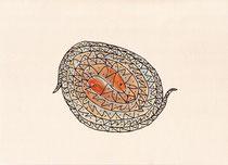 VERWORREN (SCHLANGEN)   14,5X20 cm 105,-€