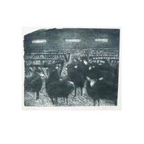 SCHAFE I  1980, 22X27 cm  165,-€