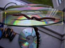 CD projeleri