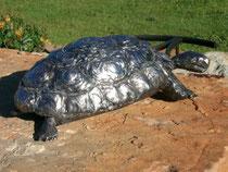 La tortue H10cm  Inox
