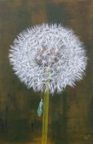 5-er Serie Busterblume 5: 40x60cm