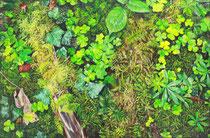 Waldboden: 60x40cm