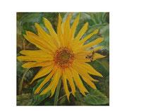 Sonnenblume klein: 40x40cm