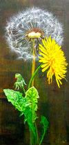 Busterblume mit Blatt & Blüte: 40x60cm