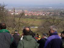 Oeschbergschnitt mit Blick auf Bissingen/Teck