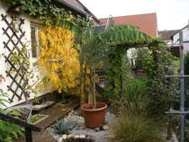 Kleiner Steingarten hinterm Haus