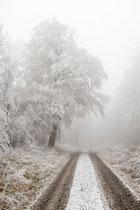 Winterstimmung im Habichtswald