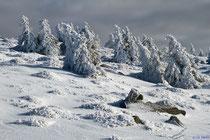 Winterstimmung auf dem Brocken
