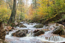 Herbstliches Ilsetal (Harz)