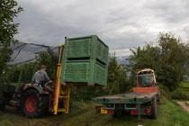 Die Äpfel werden mit einem speziellen Palettenanhänger in die Obstgenossenschaft gebracht.
