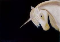 The last Unicorn   gerahmt 70x0 cm                              130.- €