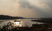Die Elbe bei Lenzen