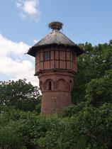 Auf dem Wasserturm wurde das erste Nest in Rühstädt gebaut