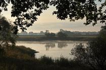 Morgenstimmung an der Elbe