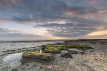 Landschapsfotografie: De Waddenzee nabij Wierum (Friesland, Nederland)