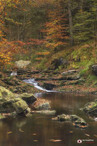 Landschapsfotografie: Vallée de la Hoëgne nabij Jalhay (Wallonië, België).