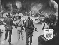 Formicula (Them!) Erscheinungsjahr: 1954/ Deutsche EA: 1960. Darsteller: James Whitmore, Edmund Gwenn