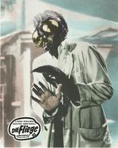 Die Fliege (The Fly) Erscheinungsjahr: 1958/ Deutsche EA: 1958. Darsteller: David Hedison, Patricia Owens
