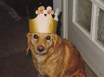 Königin Stella