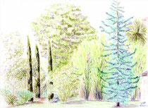Jardin privé - Fontenay sous bois