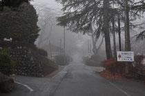 12月中旬 霧の深い日