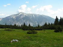 Rax - 19.Juni 2006 - Blick zum Schneeberg
