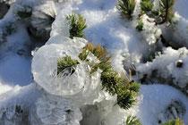 Schneeberg - 25.Oktober 2014_096 - ...reinen Schnee...